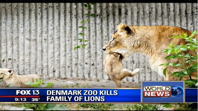 Denmark Zoo