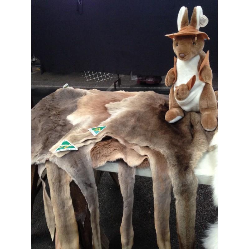 Kangaroos Product