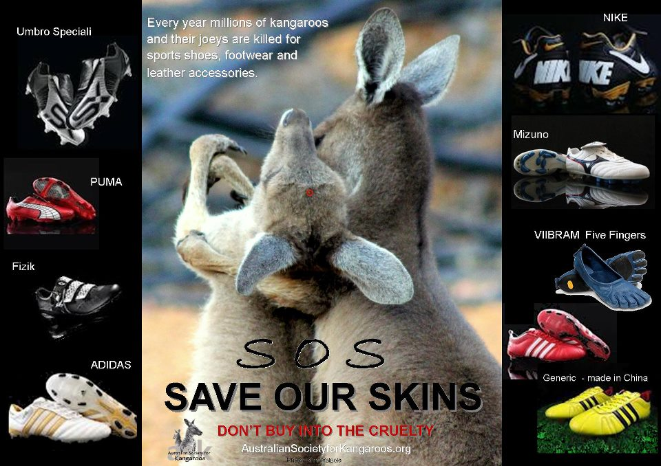 Save Kangaroos Skin