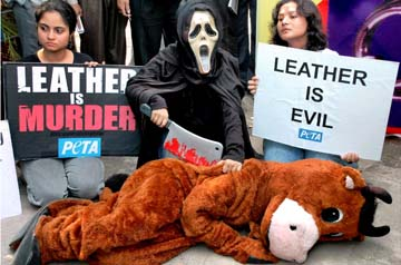 Say No to Leather