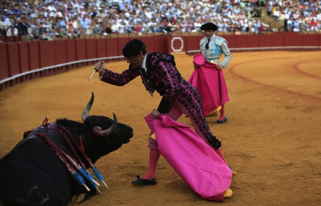 Spain-Animal-Abuser