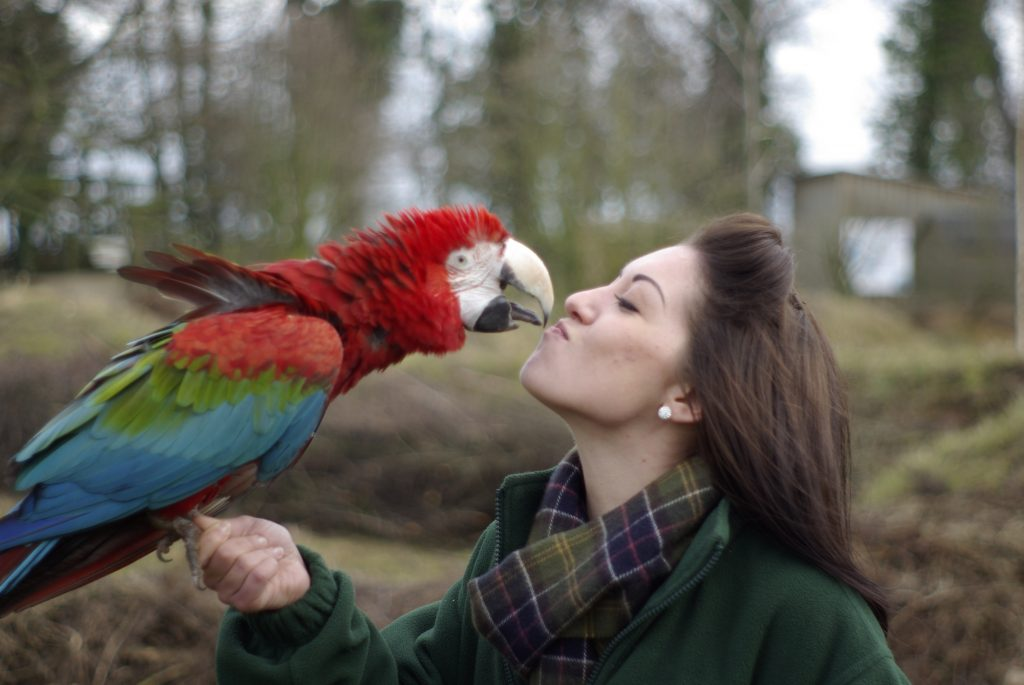 Cuddling-Your-Bird