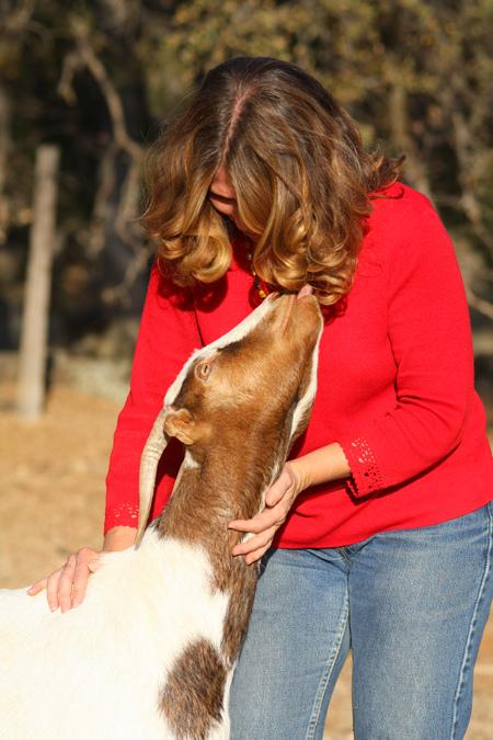 Saving-the-farm-animals