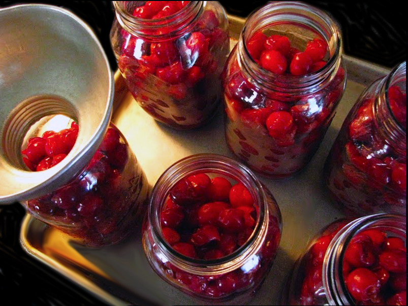 Cherry-tree-with-cherries