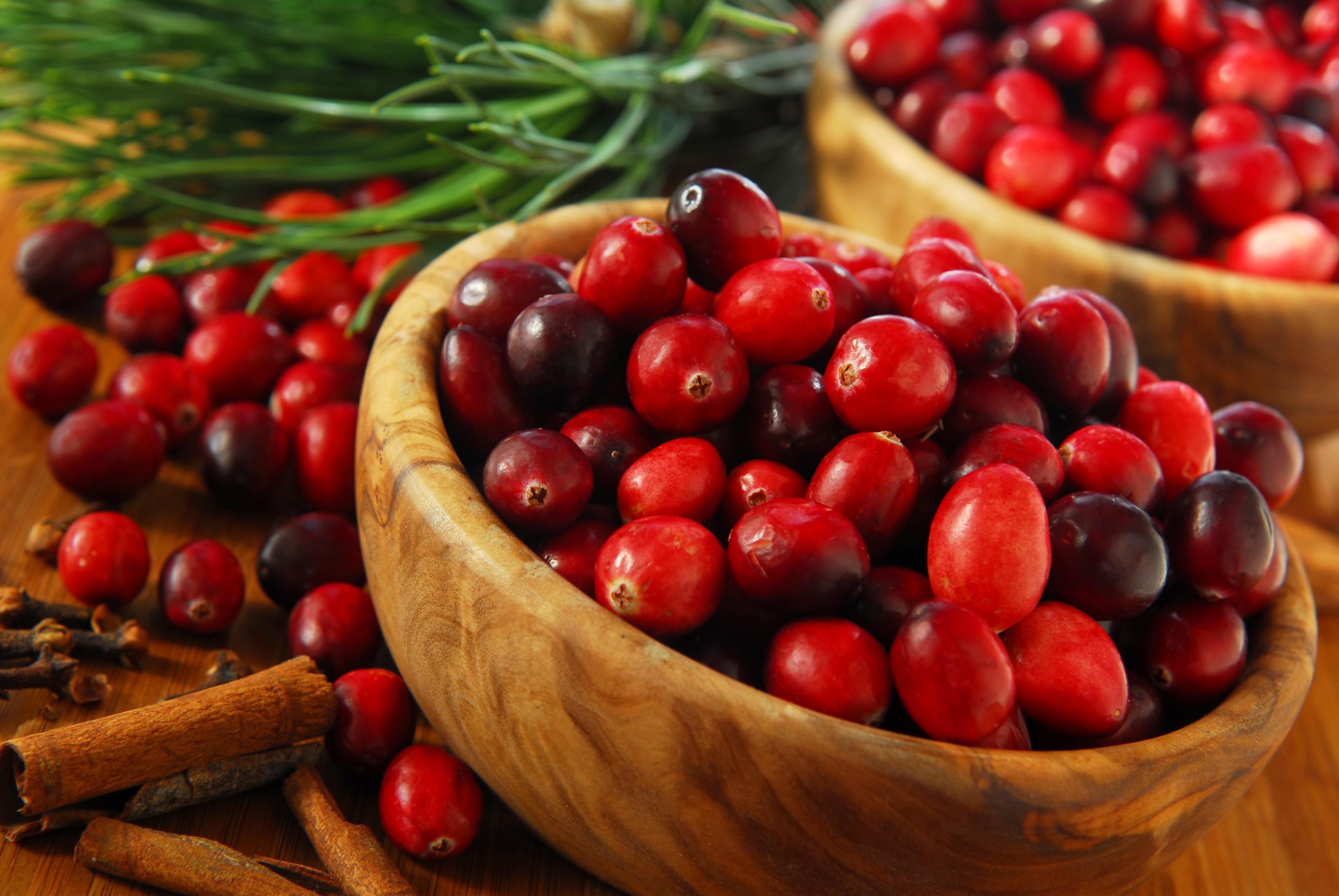 Why drink cranberry juice the answer is unexpected cranberries in bowls ccuart Choice Image