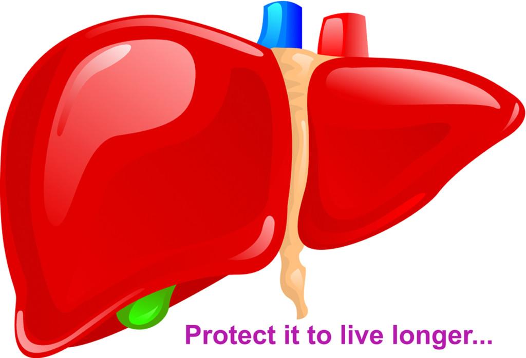 Detoxifier of Liver