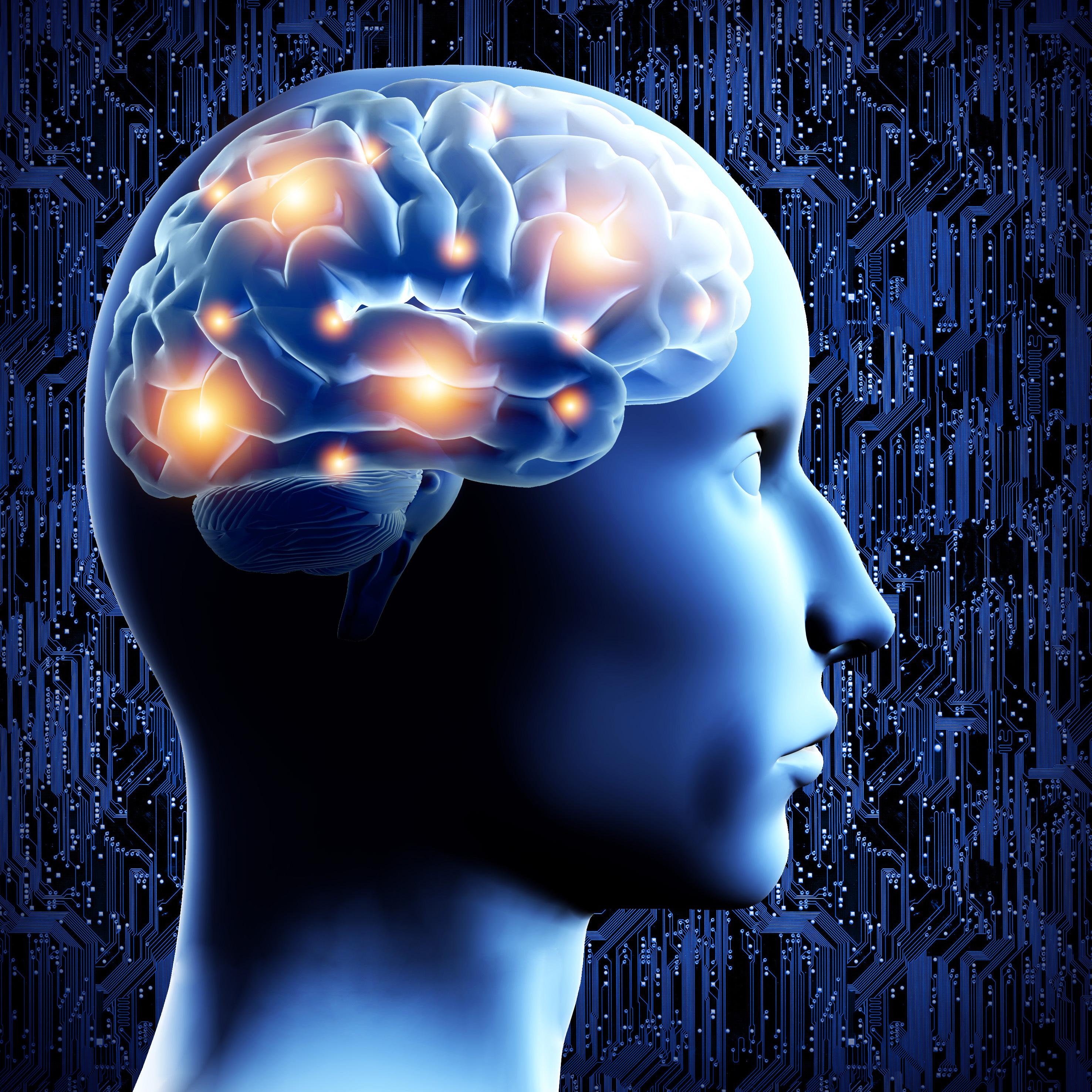 Food to increase brain function photo 1